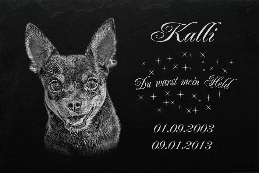 GRABSTEIN Tiergrabstein Grabschmuck Hunde Grab Hund-022 ► Fotogravur ◄20 x 15 cm